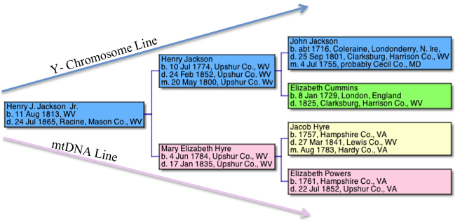 Image of Pedigree Chart for Henry J. Jackson, Jr.